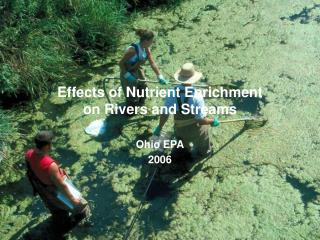 Effects of Nutrient Enrichment on Rivers and Streams