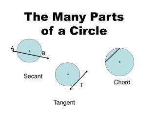 The Many Parts of a Circle
