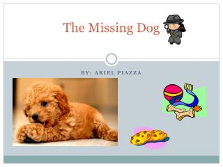 The Missing Dog