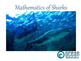 Mathematics of Sharks