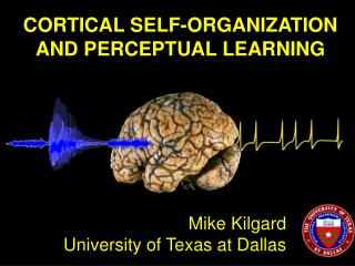 CORTICAL SELF-ORGANIZATION AND PERCEPTUAL LEARNING