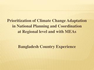 Prioritization of Climate Change Adaptation  in National Planning and Coordination