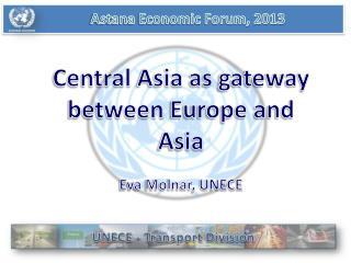 Astana Economic Forum, 2013