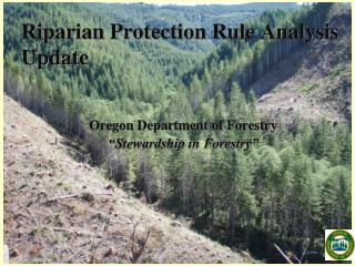 Riparian Protection Rule Analysis Update