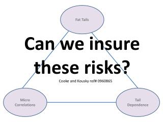 Can we insure these risks?