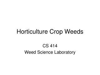 Horticulture Crop Weeds