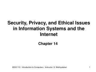 Security, Privacy, and Ethical Issues in Information Systems and the Internet