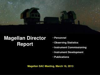 Magellan  Director  Report