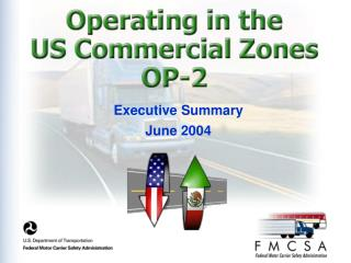 Executive Summary June 2004