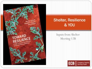 Shelter, Resilience  & YOU