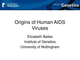 Origins of Human AIDS Viruses