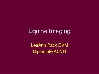 Equine Imaging