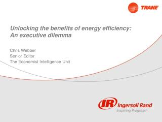 Unlocking the benefits of energy efficiency: An executive dilemma