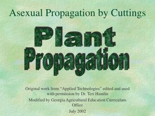 Asexual Propagation by Cuttings