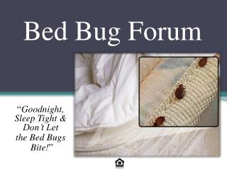Bed Bug Forum
