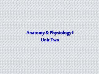 Anatomy & Physiology I Unit Two