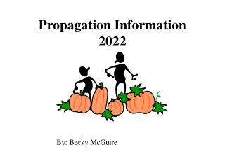 Propagation Information 2022