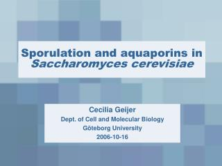 Sporulation and aquaporins in  Saccharomyces cerevisiae