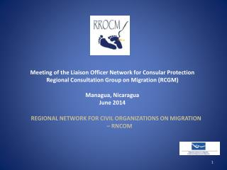 Meeting of the Liaison Officer Network for Consular Protection