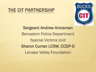 The CIT partnership