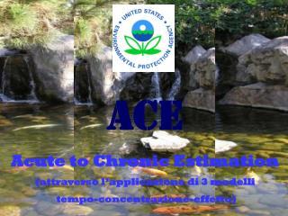 ACE Acute to Chronic Estimation (attraverso l'applicazione di 3 modelli