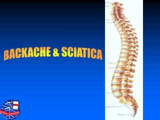 BACKACHE & SCIATICA