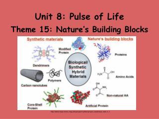 Unit 8: Pulse of Life