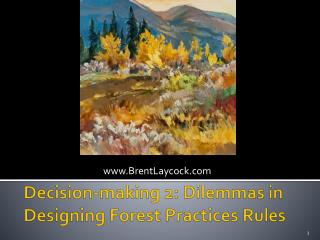 Decision-making 2: Dilemmas in Designing Forest Practices Rules
