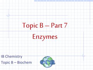Topic B – Part 7 Enzymes