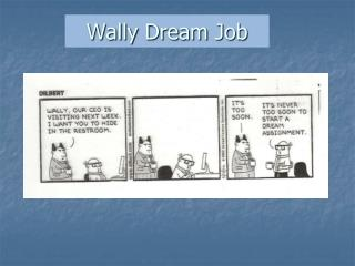 Wally Dream Job