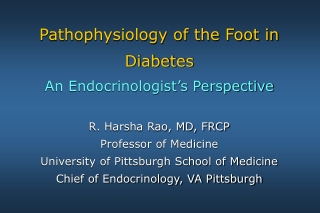 The Foot in Diabetes