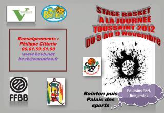 STAGE BASKET   A LA  JOURNEE TOUSSAINT 2012 DU 5 AU 9 Novembre