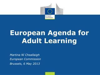 European Agenda for Adult Learning