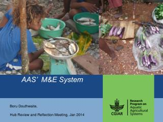 AAS'  M&E System