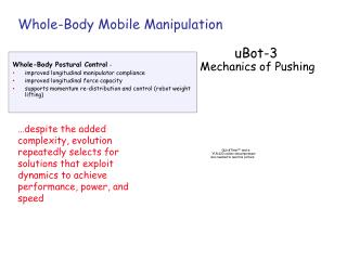 Whole-Body Mobile Manipulation