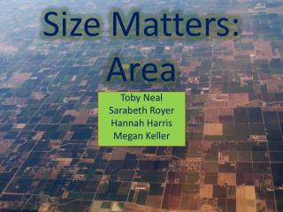 Size Matters:  Area