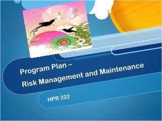 Program Plan –  Risk Management and Maintenance
