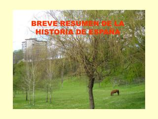 BREVE RESUMEN DE LA HISTORIA DE ESPA A