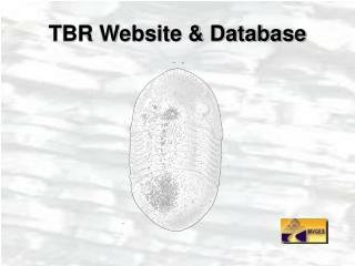 TBR Website  Database