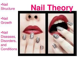 Nail Theory