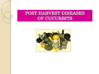 POST HARVEST DISEASES  OF CUCURBITS