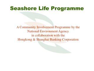 Seashore Life Programme