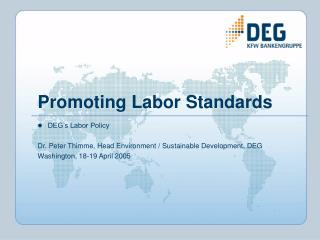 Promoting Labor Standards