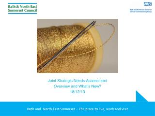 Joint Strategic Needs Assessment Overview and What's New? 18/12/13