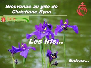 Bienvenue au gîte de Christiane Ryan