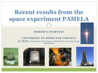 Recent results from the space experiment PAMELA