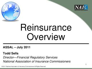 Reinsurance Overview