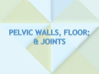 PELVIC  WALLS, FLOOR; & JOINTS