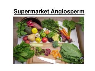 Supermarket Angiosperm