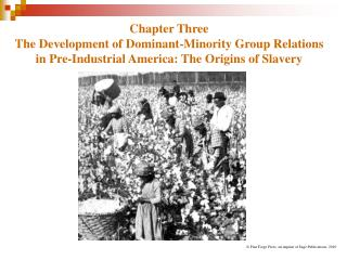 Chapter Three The Development of Dominant-Minority Group Relations in Pre-Industrial America: The Origins of Slavery